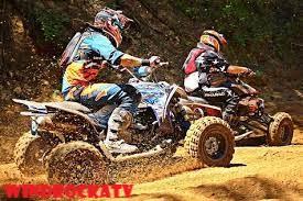 3 Rekomendasi Motor ATV Viar Terbaru